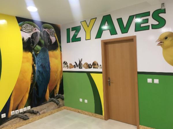 IzyAves